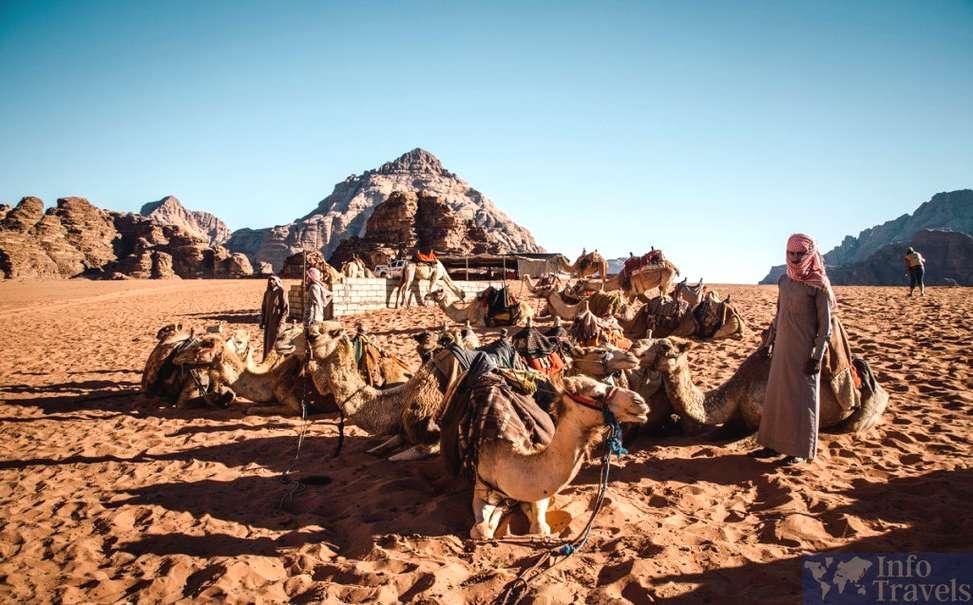 Бедуины в пустыне Вади Рам