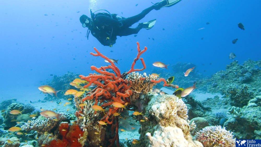 Красное море в Иордании
